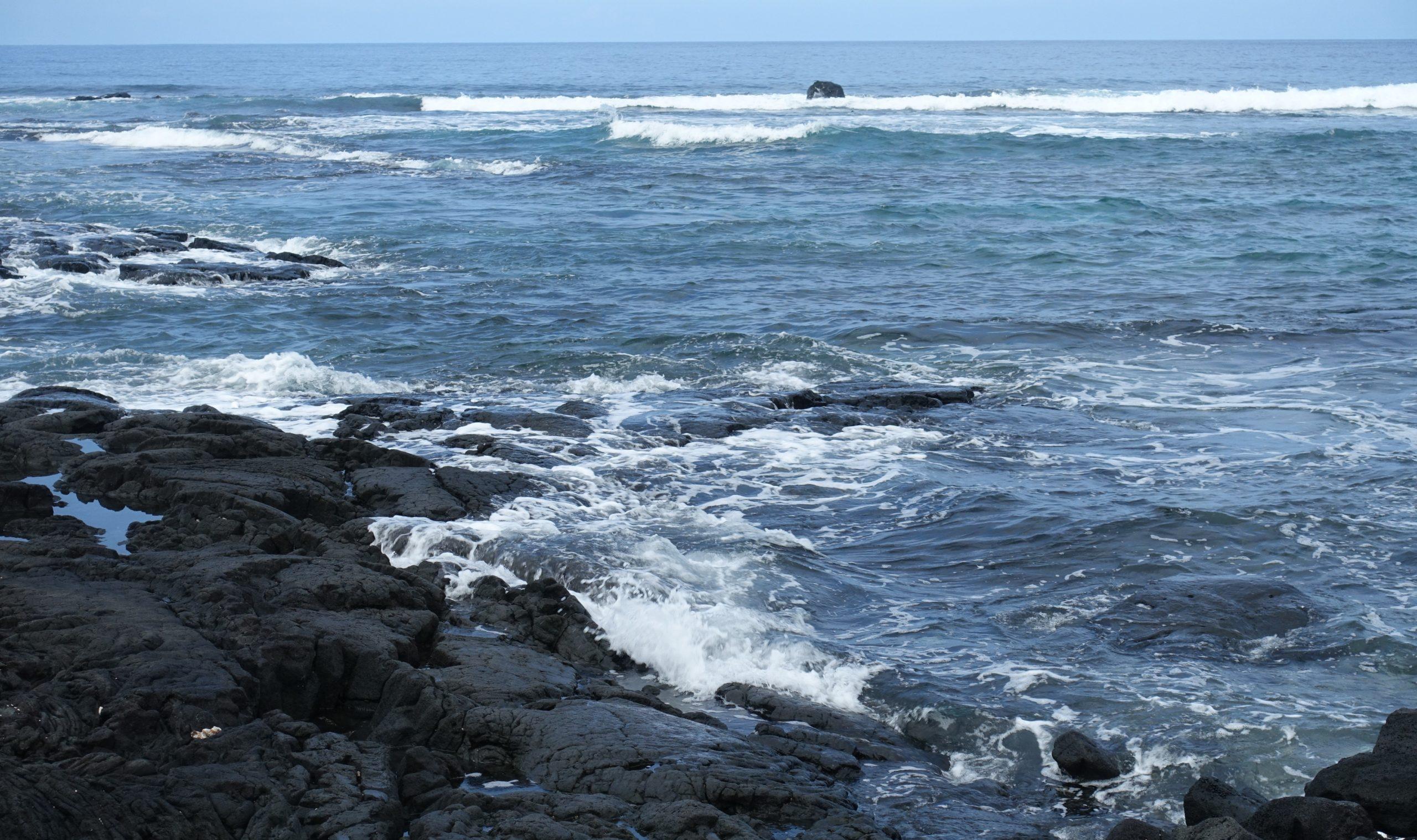 zee hooponopono 2 2 scaled